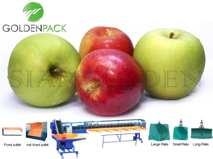 เครื่องคัดแอปเปิ้ล เครื่องคัดผลไม้